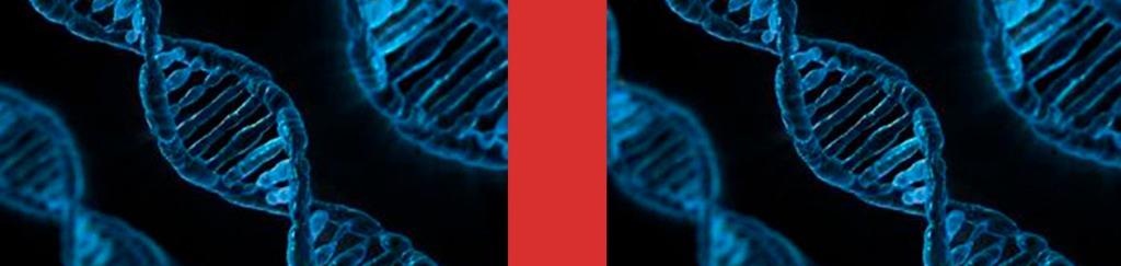 Los genes, conocidos y desconocidos a la vez